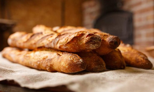 ¿Es malo el pan para las gallinas?